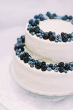 Candid cream cake decorated with bilberries and blackberries isolated close-up on white background.  Royalty Free Stock Photography