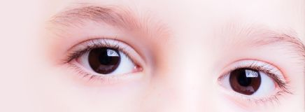 Candid eyes. Closeup view of a young girl candid eyes - wide banner purposes, medical or eye care industries stock photos