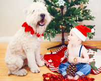 Candid lifestyle portrait of happy surprised funny white Caucasian baby boy in new year Christmas Santa hat sitting on floor Stock Images