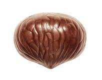 Candie шоколада от взгляд сверху собрания Стоковые Фото
