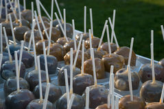 Candied Apples. Rows of hand crafted toffee apples at outdoor fair with grass behind Royalty Free Stock Photos