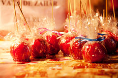Candied apples Stock Image