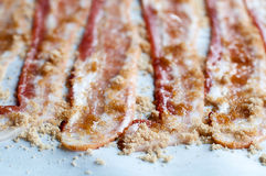 Candied Bacon Royalty Free Stock Photo
