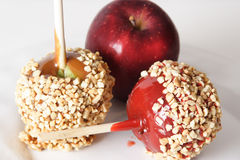 Candied,carmel and regular apple. Halloween treats. Candied, carmel and regular apple Stock Photography