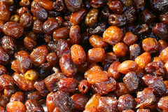 Candied dates Stock Image