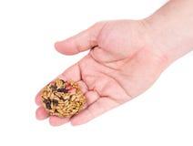 Candied piec arachidów słonecznikowi ziarna w ręce Obraz Stock