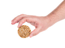 Candied roasted peanuts seeds in hand. Royalty Free Stock Photos