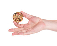 Candied roasted peanuts seeds in hand. Stock Photos