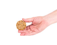 Candied roasted sunflower seeds in hand. Royalty Free Stock Photos