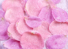Candied sugared roses petals. Background royalty free stock photos