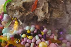Candies by animal skull. Close up of candies by animal skull royalty free stock image