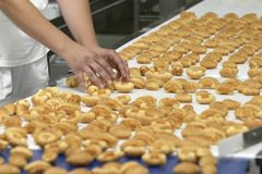 Candies industry 10. Worker in interior of food industry production Royalty Free Stock Photos
