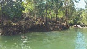 CANDIJAY, BOHOL, FILIPPINE - 20 NOVEMBRE 2015: Il tuffo e la nuotata dei bambini della filippina nel fiume stock footage