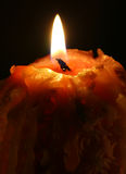 Candle. A burning candle in the dark Royalty Free Stock Photo