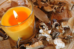 Candle And Dried Plants Royalty Free Stock Photography