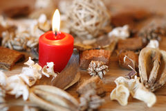 Candle And Dried Plants Stock Photography