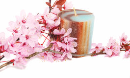 Free Candle And Flowers. Stock Photography - 9054782