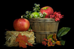 Candle in autumn apple Stock Images