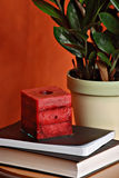 Candle and books by plant. Wax candle on pile of books by leafy green plant Stock Photography