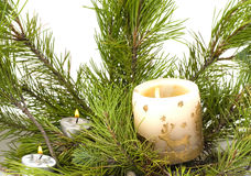 The candle on the brach of tree Royalty Free Stock Photo