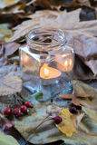 Candle burning between dry leaves Royalty Free Stock Photo