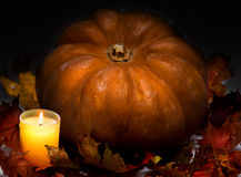 candle burns before pumpkin with a maple leaf on a black background Stock Photos