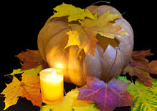 Candle burns before pumpkin with a maple leaf on a black background Stock Photography