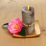 Candle and camellia Stock Images