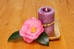 Candle and camellia Stock Photography