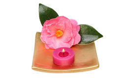 Candle and camellia Royalty Free Stock Photo