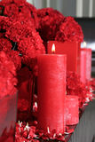 Candle and carnations. The candle burns near to carnations and petals Royalty Free Stock Photos