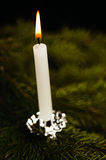 Candle on Christmas tree Royalty Free Stock Photography