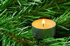 Candle and christmas tree Stock Photography