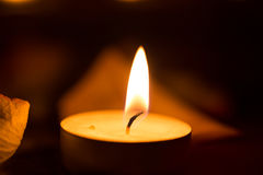 Candle close up and rose petals. Royalty Free Stock Photo