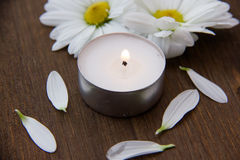 Candle and daisies Stock Photo