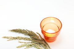 Candle with ears of rice and weeds Stock Photography