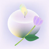 Candle and flower Stock Photo