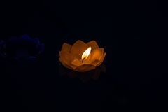 Candle flower Beautyful yellow colorful in water,black background. Candle flower yellow colorful in water,black background Royalty Free Stock Photos