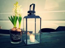 A candle and a flower Royalty Free Stock Photo