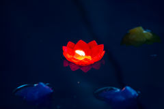 Candle flower red colorful or water Stock Images