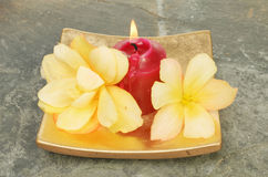 Candle and flowers Stock Image