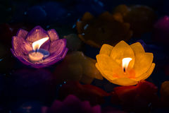 Candle flowers purple and yellow colorful Royalty Free Stock Photo
