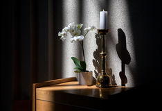 Candle, flowers and shadows Stock Image