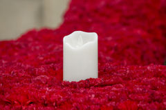 Candle in flowers Royalty Free Stock Photography
