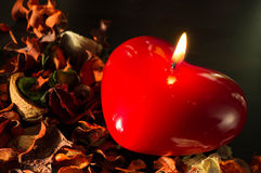 Candle in the form of heart and dry flowers Royalty Free Stock Images