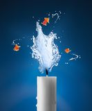 Candle and goldfish royalty free stock image