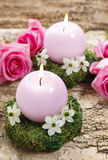 Candle holder made of moss, decorated with arabian star flowers. (ornithogalum arabicum). Pink roses in the background Stock Photography