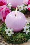 Candle holder made of moss, decorated with arabian star flowers. (ornithogalum arabicum). Pink roses in the background Royalty Free Stock Images