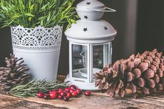 Candle Lantern Beside Pine C One and Green Leaf Plant Royalty Free Stock Photo