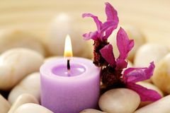 Candle and lavender Royalty Free Stock Image